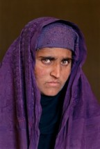 1_McCurry_Sharbat_Gula_ragazza_afgana