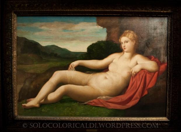 Jacopo Palma il Vecchio, Venere, olio su tela, 1528