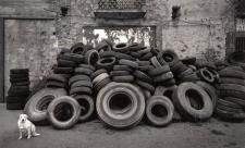 © Pentti Sammallahti Cilento, Italy (1999)