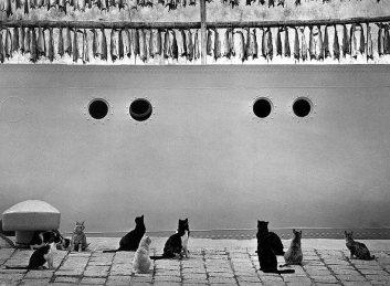 © Pentti Sammallahti, Iceland (1980)