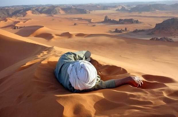 Merit Prize Winner Meritato riposo nel Sahara, Evan Cole