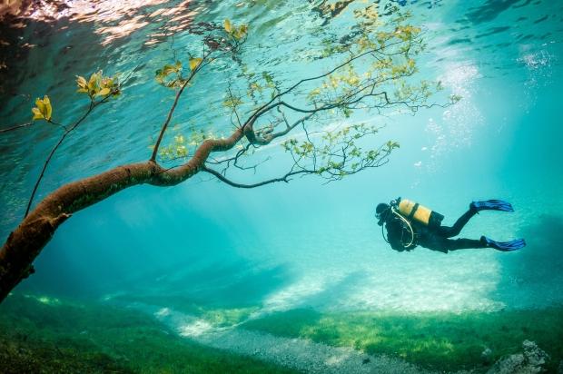 Operatore subacqueo in Magic Kingdom by Marc Henauer